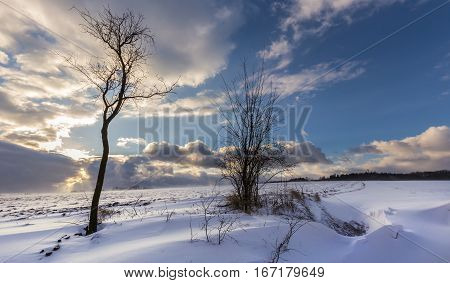 Winter landscape covered with snow and dense clouds. Moravian landscape Pametice.