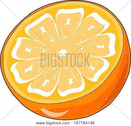 Cut in half an orange. Citrus. Fruit.