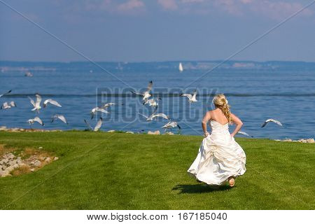 A bride running to scare birds away