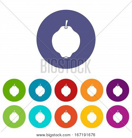 Quince fruit set icons in different colors isolated on white background