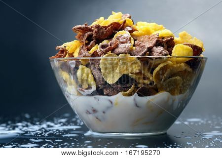 the bowl of cornflakes filled with milk