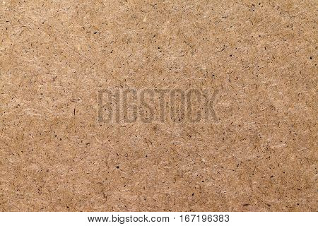 Background of pressed wood fibers texture light speckled board