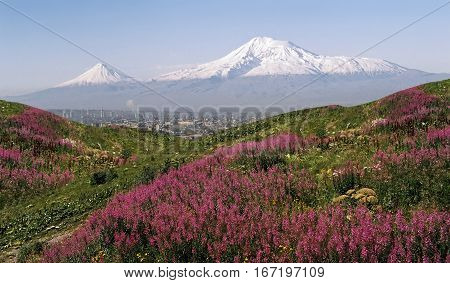 A beautiful view of Mountain Ararat during the day