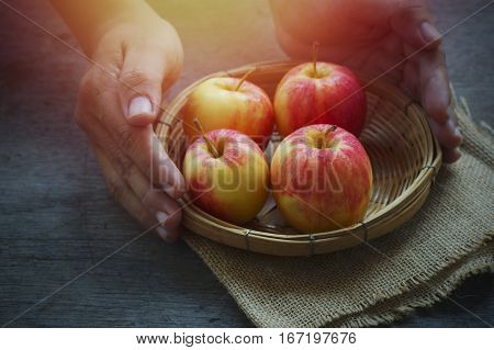 apple in younger hand concept in giver and donate food in dark tone