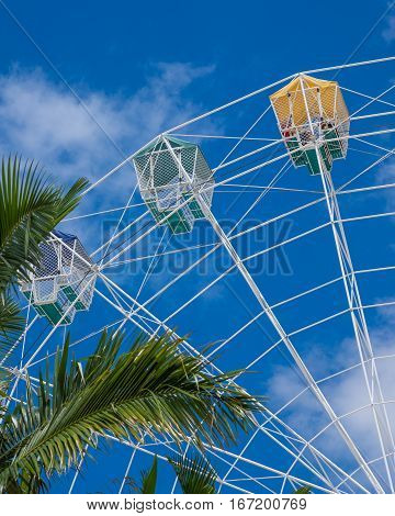 White Ferris wheel against blue sky with clouds and palm trees in foreground