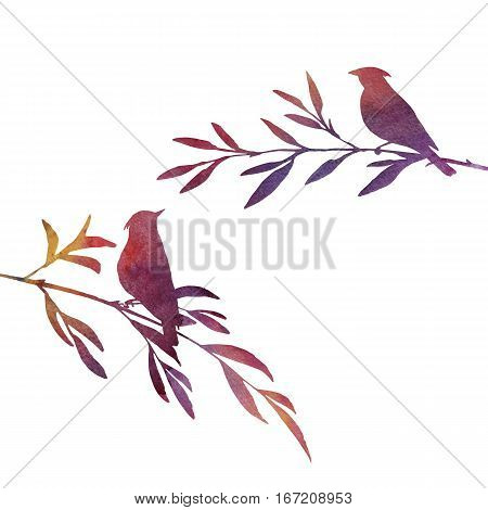 watercolor silhouettes of birds at tree, hand drawn songbirds at branch, Valentine symbol, a pair of lovers, isolated painted nature element