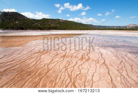 Midway Geyser Basin In Yellowstone National Park In Wyoming Usa