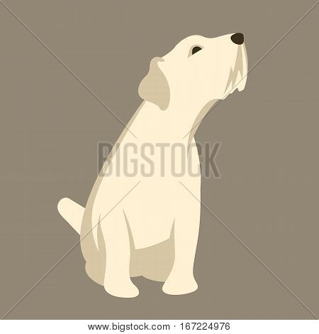 russel Terrier vector illustration style Flat side front