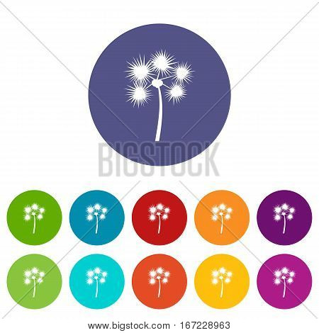 Spiny tropical palm tree set icons in different colors isolated on white background