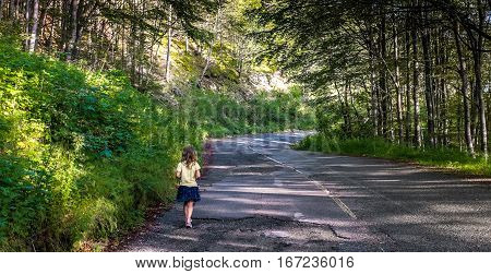 Alone girl walking on road in the forest