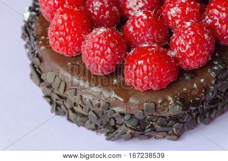 Raspberry And Chocolate Cake Detailed View