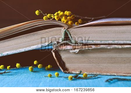 Spring background with mimosa flowers - old worn books with spring mimosa flowers. Focus at the book spines