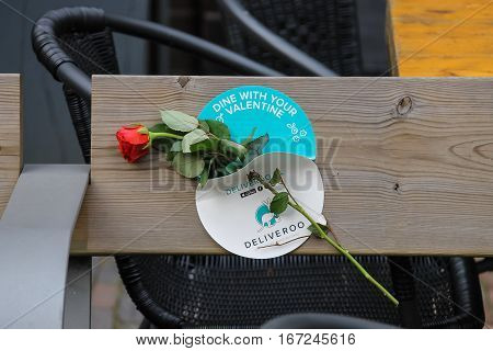 Utrecht the Netherlands - February 13 2016: Red rose on the wooden bench