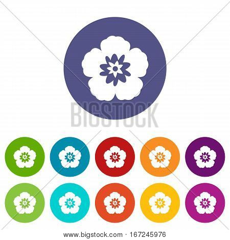 Rose of Sharon, korean national flower set icons in different colors isolated on white background