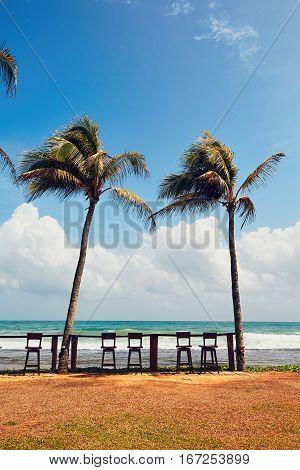 Sunny Day In Beach Bar