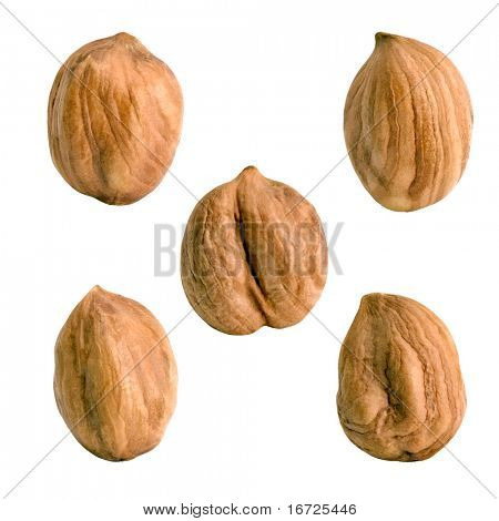 Hazel nuts on the white background (collection).