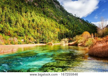 River With Azure Crystal Water Among Evergreen Woods