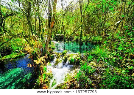 River With Azure Crystal Clear Water Among Green Woods