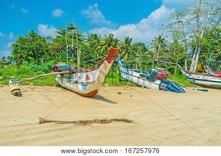 The Catamaran Boats