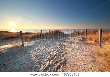 sunlight over sand path to North sea beach Holland
