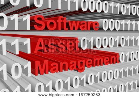 Software asset management in the form of binary code, 3D illustration