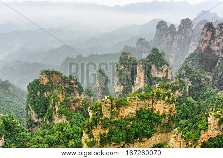Amazing View Of Trees Growing On Steep Cliffs (avatar Rocks)
