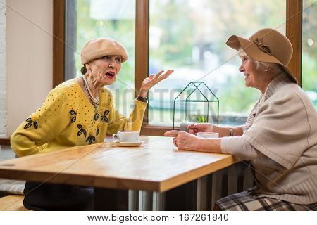 Senior women and cafe table. Two ladies talking indoor. Conversation of old friends.
