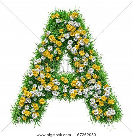 Letter A Of Green Grass And Flowers. Isolated On White Background. Font For Your Design. 3D Illustration
