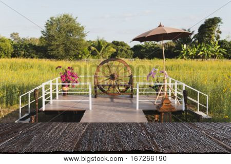 Walkway To Terrace In Sunhemp Pummelo Flower Filed (blur Image) With Selected Fccus Wood Table For D