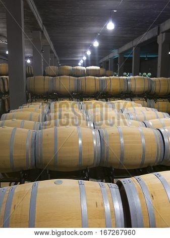 Indoor Photo Of Wooden Barrels In Old Winery