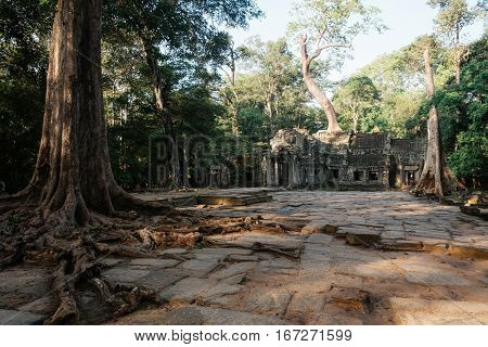 Entrance to Ta Prohm temple during the sunrise without people at Angkor complex, Siem Reap, Cambodia