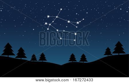 Vector illustration of Gemini constellation on the background of starry sky and night landscape