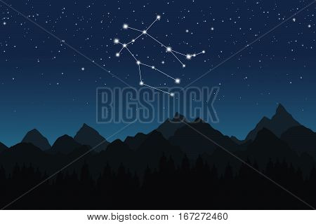 Vector illustration of Gemini constellation on the background of starry sky and night mountain