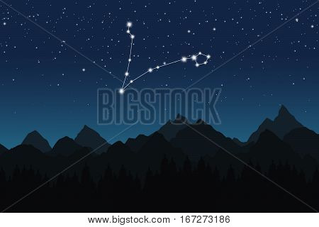 Vector illustration of Pisces constellation on the background of starry sky and night mountain