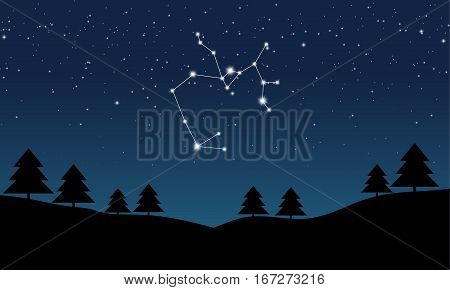 Vector illustration of Sagittarius constellation on the background of starry sky and night landscape