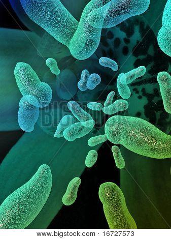 Bacterium background.