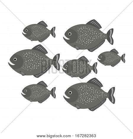 Piranha a school of fish. vector illustration for children isolated on white background