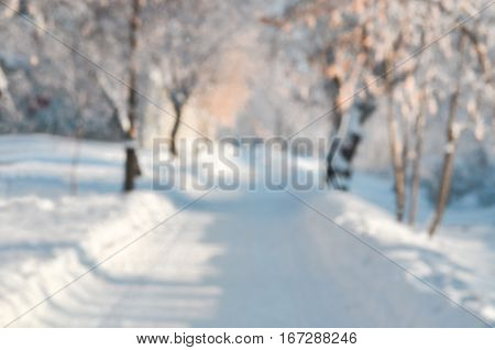Wiinter blurred background of trees and snow