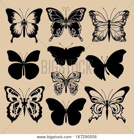 Set of different forms butterflies. Black silhouettes butterflies. Vector illustration