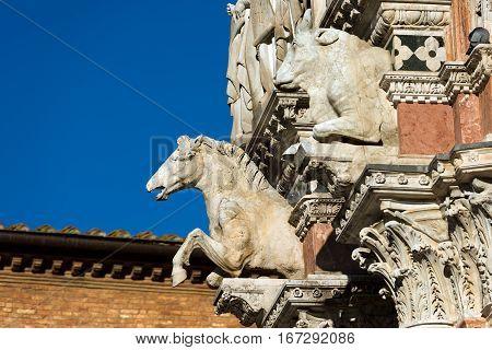 Detail of the facade of the Siena Cathedral (Santa Maria Assunta) 1220-1370. Toscana (Tuscany) Italy Europe