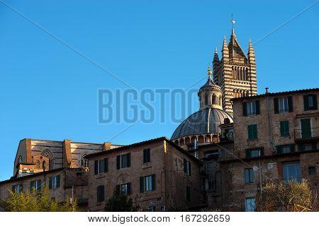 Detail of Siena Cathedral (Santa Maria Assunta) 1220-1370 in the evening. Toscana (Tuscany) Italy Europe