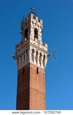 Detail of the Torre del Mangia 87 m. (Tower of Mangia) on a clear blue sky. Siena Toscana (Tuscany) Italy