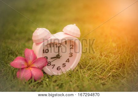 Pink clock with flower on grass background. Vintage tone