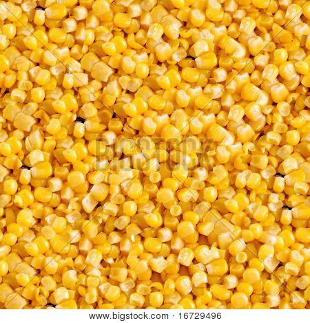 Corn closeup seamless background.