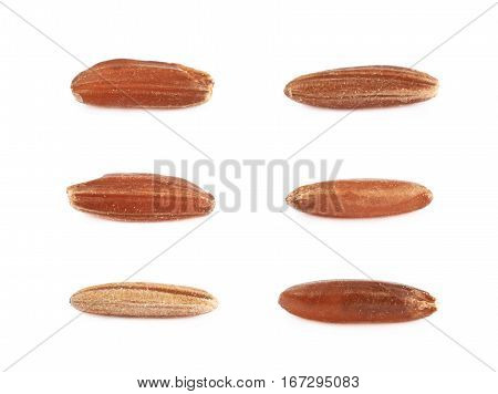 Six single brown rice grains isolated over the white background