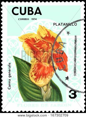 CUBA - CIRCA 1974: Postage stamp printed in Cuba shows the flower Canna generalis, series garden flowers