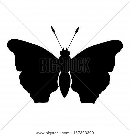 black butterfly feminist defense design, vector illustration