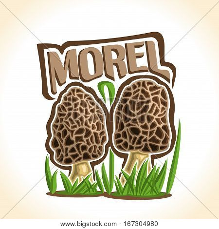 Vector logo Morel Mushrooms: 2 wild mushrooms on ground forest glade, cartoon still life with lettering morel on sprout grass, outdoors nature label with inscription for organic edible fungi morchella