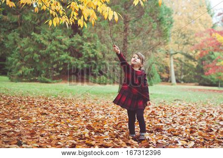 A toddler girl in red tartan dress playing with falling leaves and sticks. Photo with applied vintage effect