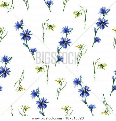 Seamless pattern with yellow rocket and blue chicory flowers. Hand drawn watercolor painting on white background.